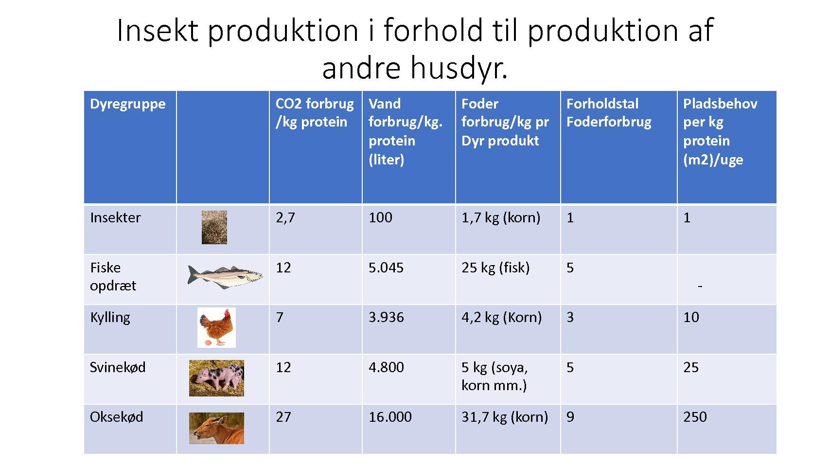 Insektproduktion er bæredygtig protein produktion