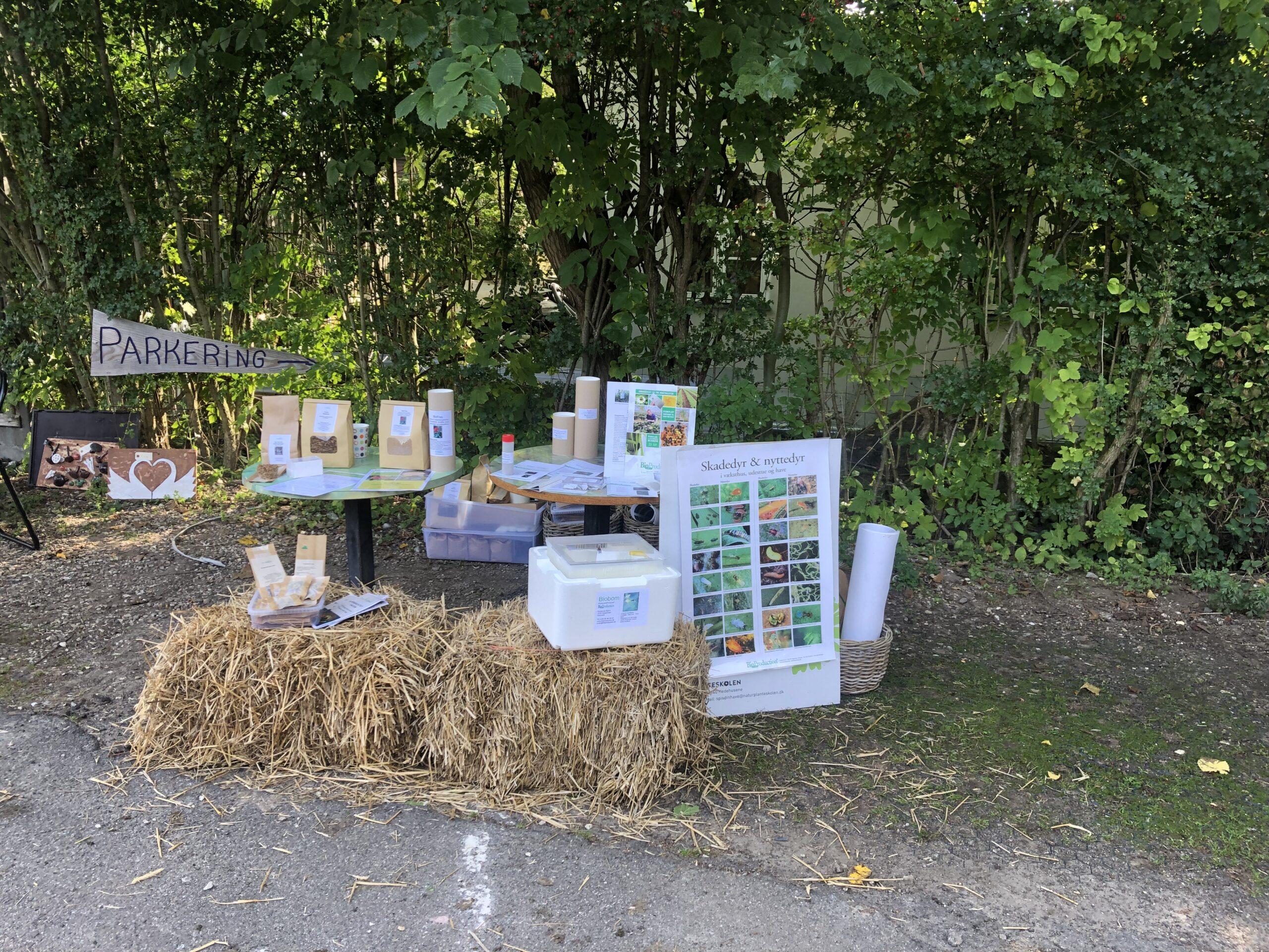 Økologisk høstmarked på Naturplanteskolen